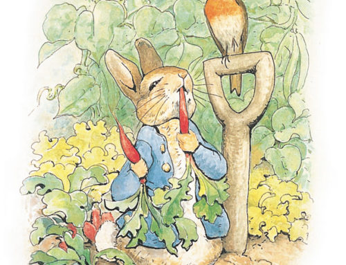 SPRING FORWARD: PETER RABBIT & CARNIVAL OF THE ANIMALS!